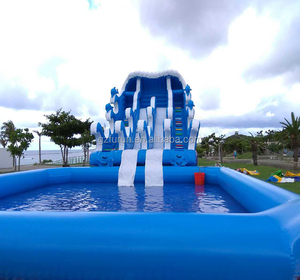 Giant inflatable pool slide/tropical inflatable water slide with pool for kids and adults