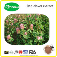 100% natural 20% isoflavones natural red clover extract Isoflavones