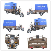 China factory direct lifan 200cc gasoline africa cargo tricycle