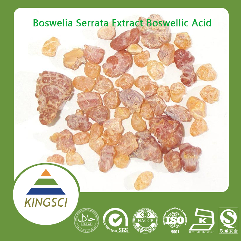 manufacturer boswelia serrata extract 65% Boswellic Acid Bulk Powder