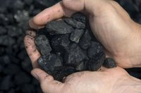Indonesian Non Cooking Low Sulphur Steam Coal