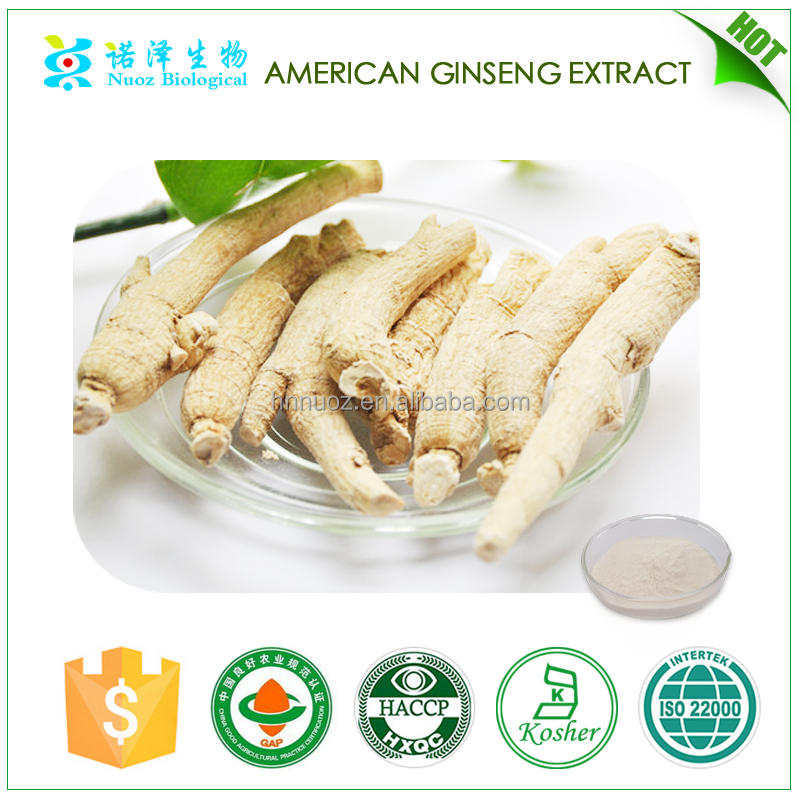 Natural Chinese Herb promoting physical endurance American ginseng extract
