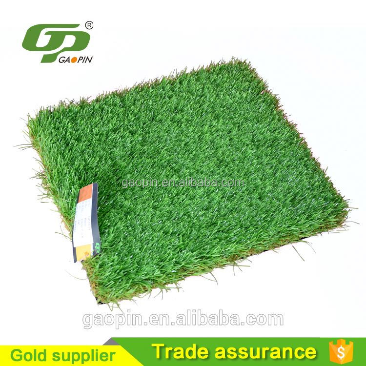 Alibaba china hot-sale landscape grass seed
