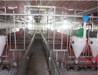 pig farm breeding equipements nursing crate for piglets