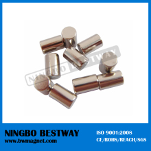China Customized Cheapest Small Nd Cylinder Strong NdFeB Magnets for Sale
