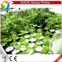 2-4mm 4-8mm 3-5mm horticulture perlite / expanded construction insulation perlite
