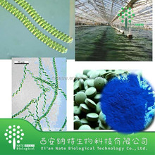 GMO factory High quality Spirulina blue colour Phycocyanin,algae blue powder manufactures