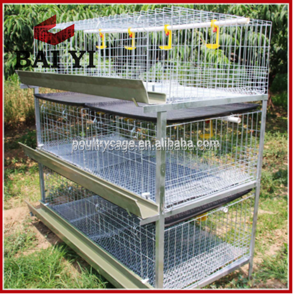 Factory Offer Broiler Chicks Rearing Cage/Growing Broiler Chicken Cage