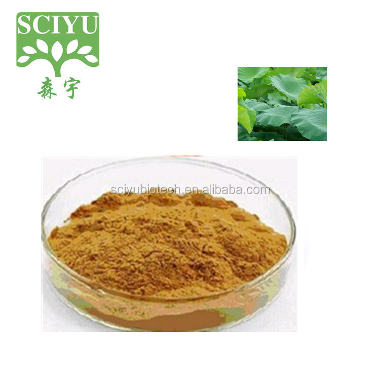 100% Natural Herbal Lotus Leaf Extract or Lotus Extract Nuciferine 2% 3% 4% 5% 10%