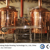Red Copper Beer Brewing System 1000L