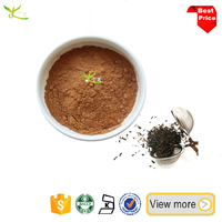 Professional Tea Extract Supplier instant blank tea extract powder Black tea extract