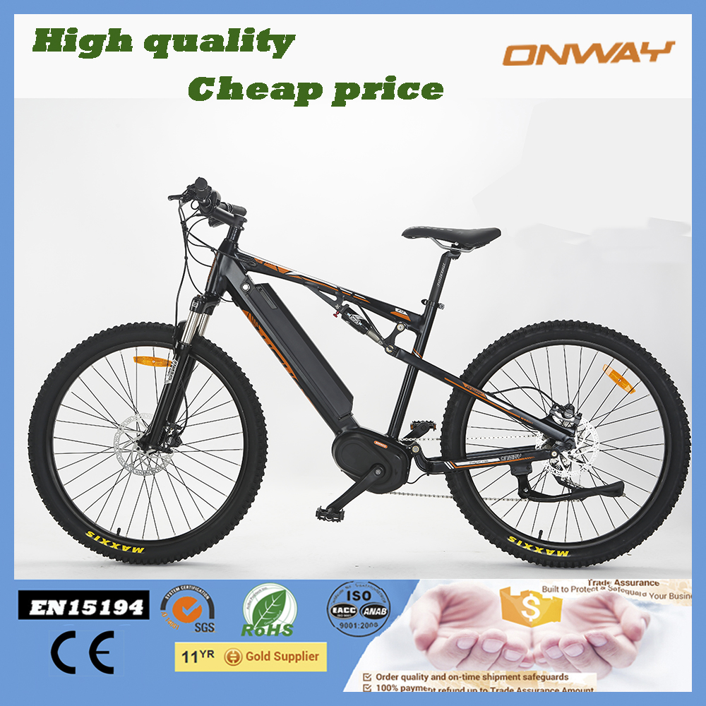 Best price electric mountain bike alloy frame ebike