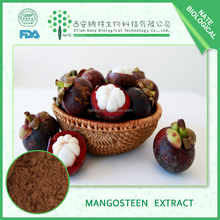 Hot quality natural herb extract freeze dried mangosteen fruit powder 95%