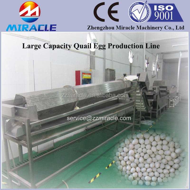 Top seller quail egg process machines, quail eggs boiling processing line, machine for quail egg farm application