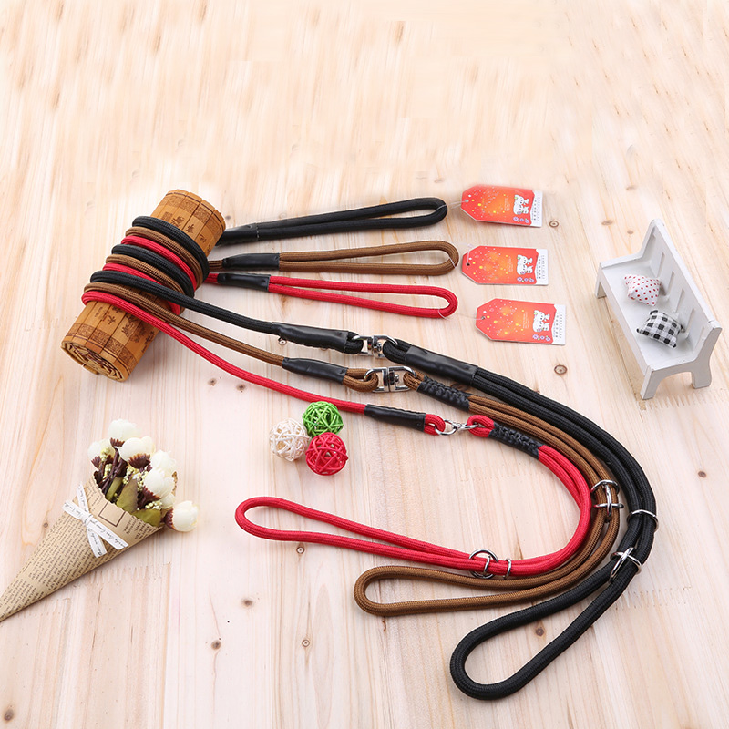RoblionPet Pet products Nylon dog leash rope wholesale