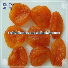 dry apricot fruit