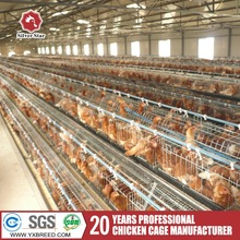 Commercial Chicken House for Sale Design Layer Chicken Cages