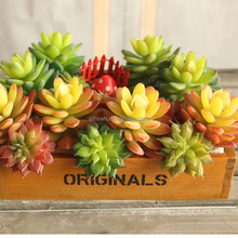 artificial plant grass wall /artificial mini succulent plant; hanging wall decoration
