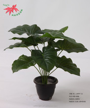 Hot Selling Natural Touch Wholesale Artificial Green Plant Cheap For Home Decoration