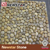 /product-detail/newstar-pebble-mosaic-tile-217881492.html