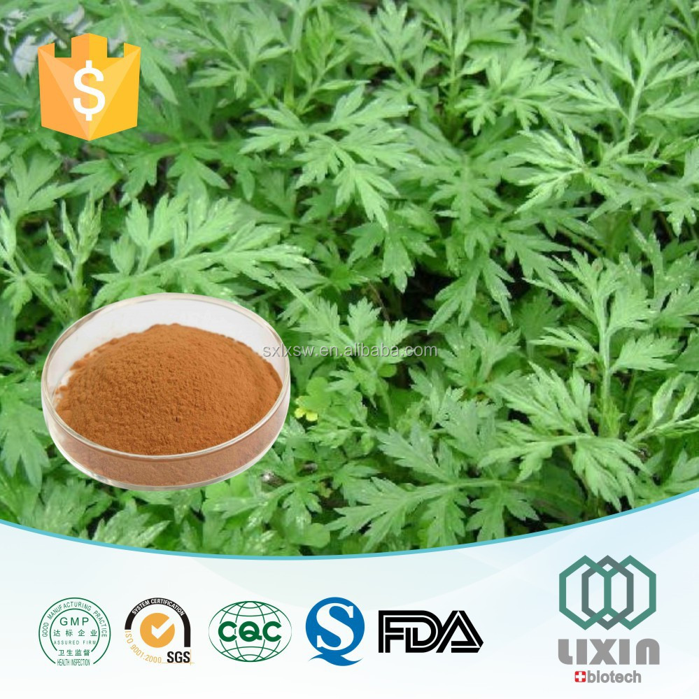 Hot Sale GMP factory supply High Quality organic herb mugwort leaf extract folium artemisiae argyi extract powder,Aiye leaf