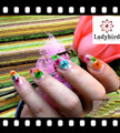 2014 nail art decoration /nail flower decoration/nail art dry flower