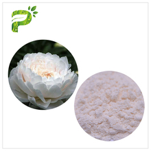 Renovating Skin Natural Cosmetic Raw Material Ingredients Off White Color Paeonia Lactiflora Powder