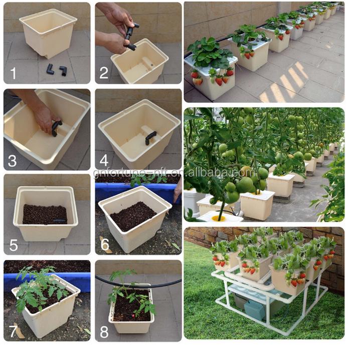 Single Dutch Bucket Hydroponic System, Easy DIY, Patio, Balcony, Winter Gardening.png