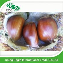 Raw Chinese hebei large mature organic chestnuts