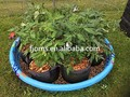 agro plastic planter bag for beans fruits and vegetables