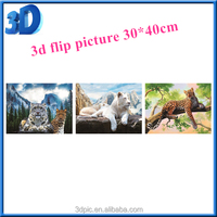 2016 Best quality 3d PET PP lenticular flip picture / image for gift / home decoration and promotion