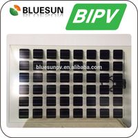 High Quality 10KW BIPV 160W 200W Solar Module Cheap Price For Greenhouse