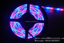 CE ROHS Approved DC 12V Top selling LED strips with 60 LEDs per meter waterproof and LED type 5050 RGB 5 meter