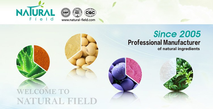Good reliable factrory supply silymarin extract powder