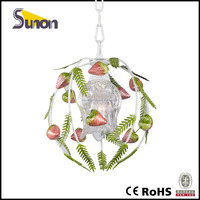 Single natural style of strawberry ball pendant lamp/decorative chandelier