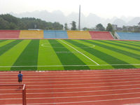 Synthetic artificial grass for football playground /artificial grass soccer fields