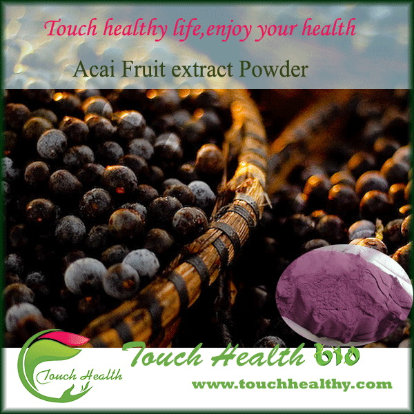 Touchhealthy supply 100% natural acai berry powder/acai berry fresh fruit/acai berry extract