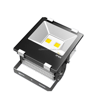 Nichia SMD3030 30W Flood Light 130lm/w Super Slim