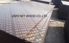 different types of plywood full poplar core Megaplex (6-30mm) /black film faced plywood