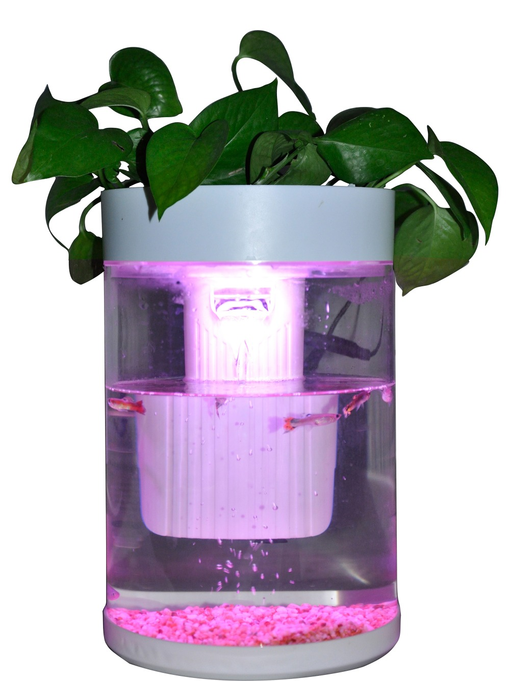 With Plant green Plants Mini office table aquarium