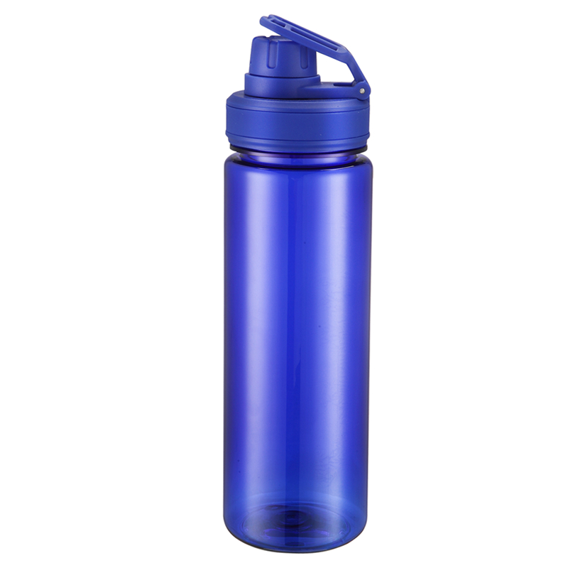 Promotional transparent tritan water bottle plastic with handle With free sample
