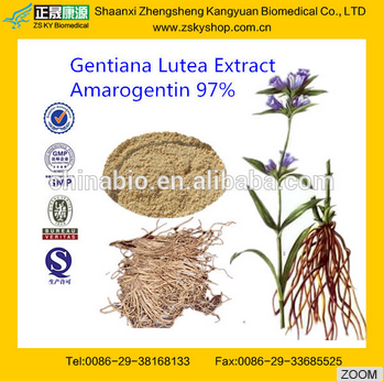 Gentiana Lutea Extract,Gentiana Lutea Extract Powder,Gentiana Lutea Root Extract (4:1~20:1) from GMP manufacturer