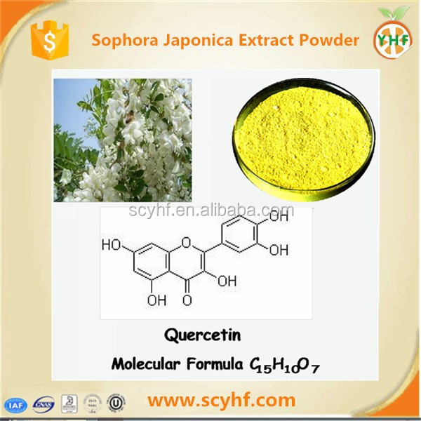 Hot selling Sophora japonica Flower buds Extract Natural quercetin plant extract