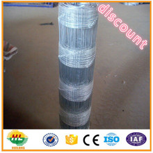 Poultry Equipment Glavanized Farm Fence/Field Fence/Lowes Hog Wire Fencing For Animals