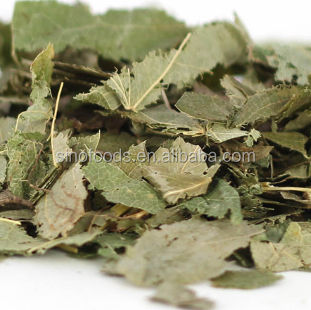 Yin Yang Huo High Quality Best Price Epimedium Herb Sex Health