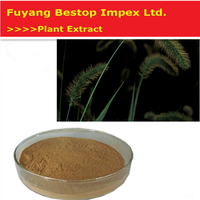 Ma wei cao Free Sample Horsetail Extract Pure Natural Plant Extracts