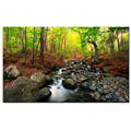 Nature Landscape Canvas Wall Art Summer Forest Picture Prints for Modern Home Decor Artwork