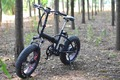 20*4.0 fat tire folding E bike