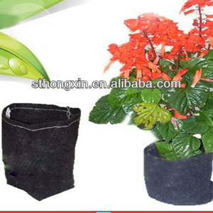 PP Nonwoven Fabric for gardening plant