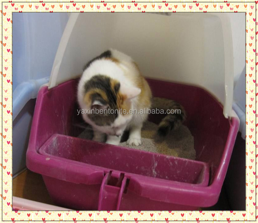 kitty sand litter for sale